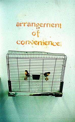 Convenience, 1998, Caged bird series